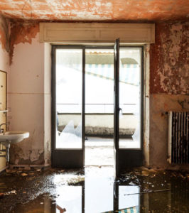 Water Damage Cleanup Brevard NC